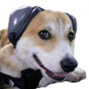 dog ear protector