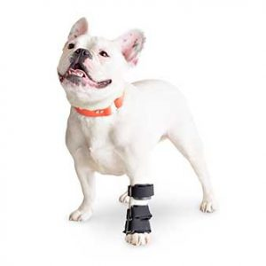 walkin-carpal-splint_main